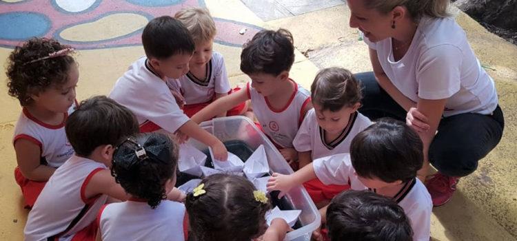 Atividades lúdicas desenvolvem o aprendizado das crianças do Maternal 2
